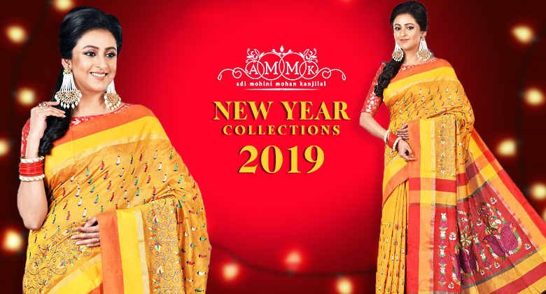 New Year Saree Collections for 2019
